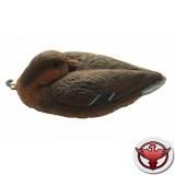 Чучело кряква спящая (утка)