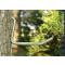 Ступени вкручивающиеся в дерево, камуфляжные